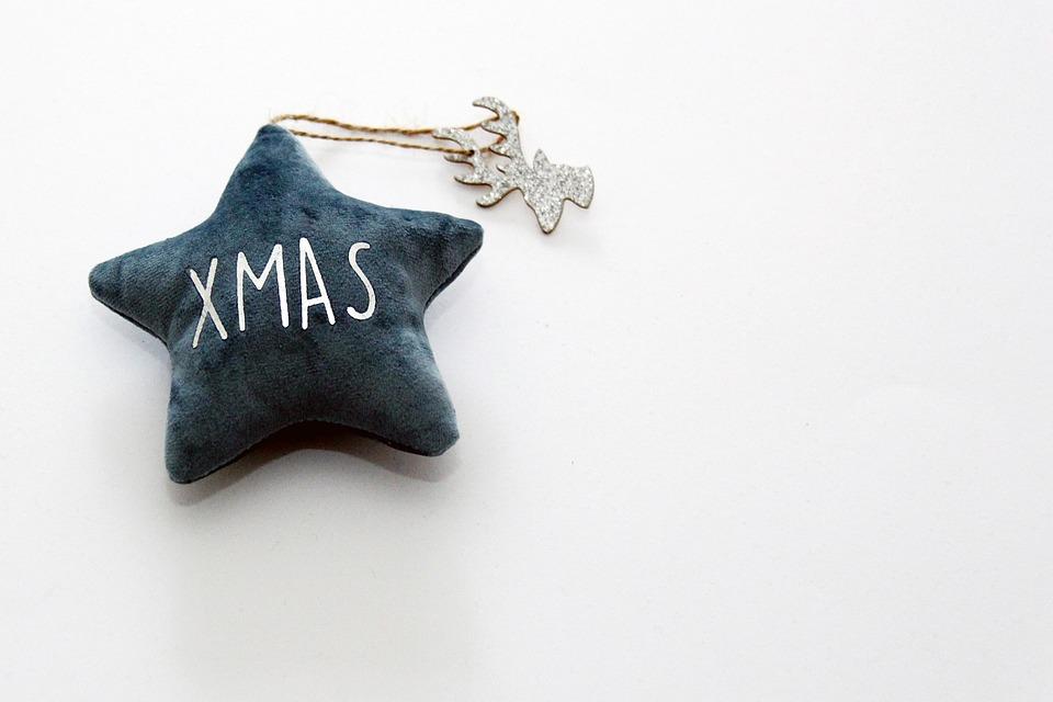 Star, Xmas, Christmas, Decoration, Deco, Poinsettia