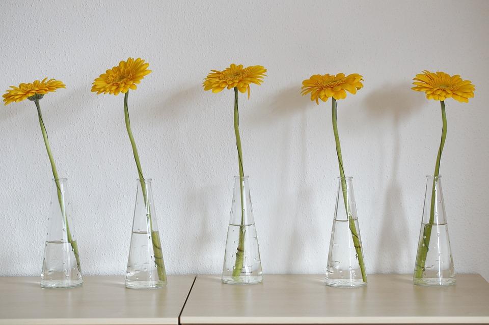 Gerbera, Yellow, Flower, Blossom, Bloom, Schnittblume