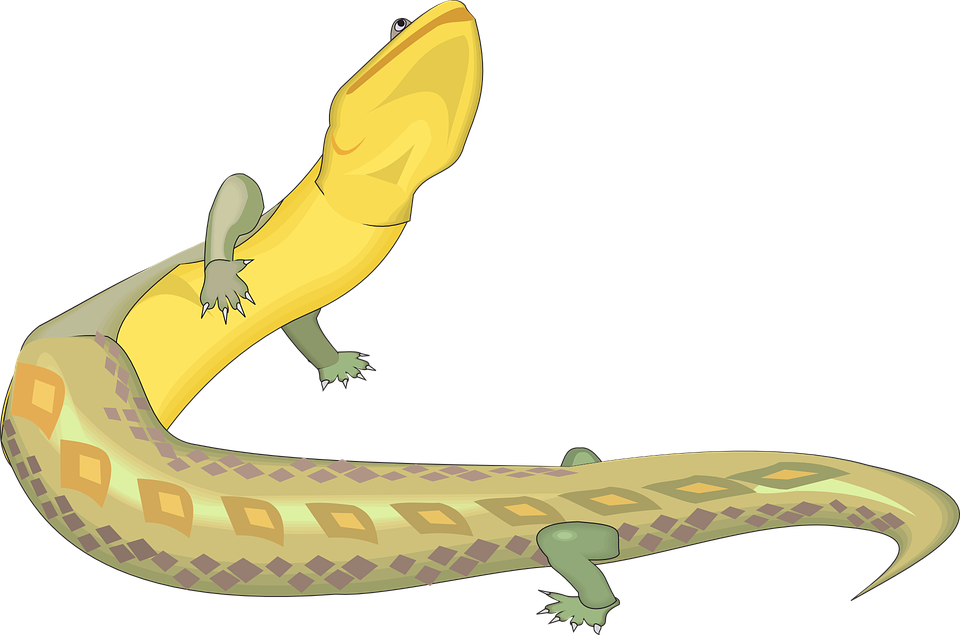 Lizard, Green, Yellow, Reptile, Ancient