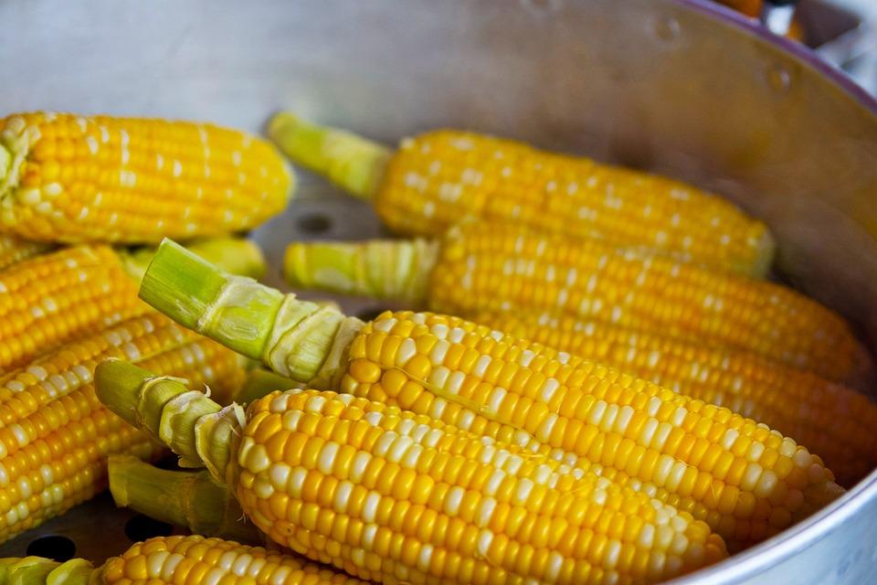 Pop Corn, Yellow, Popcorn, Food, Nutrition, Eat