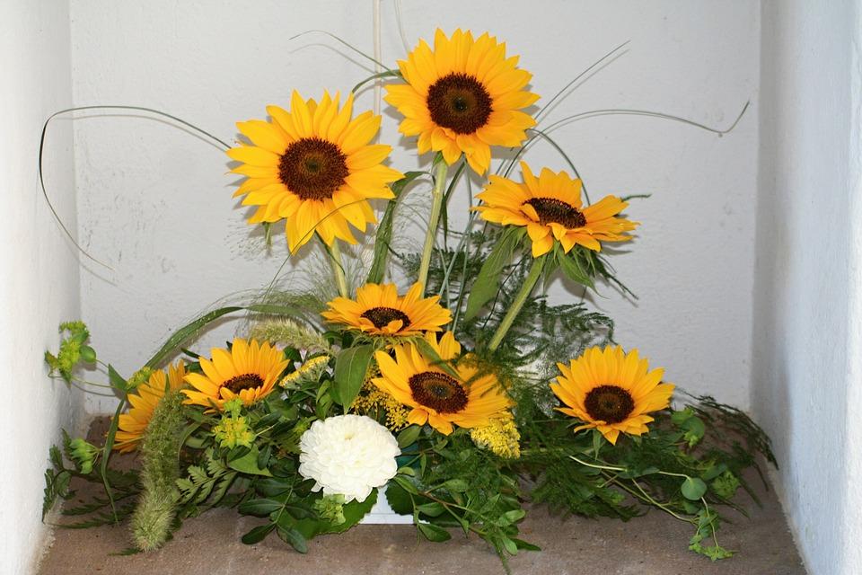 Sun Flower, Flowers, Summer, Yellow, Sun, Plant