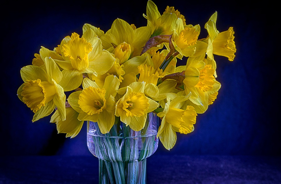 Vase, Flowers, Bouquet, Daffodils, Yellow