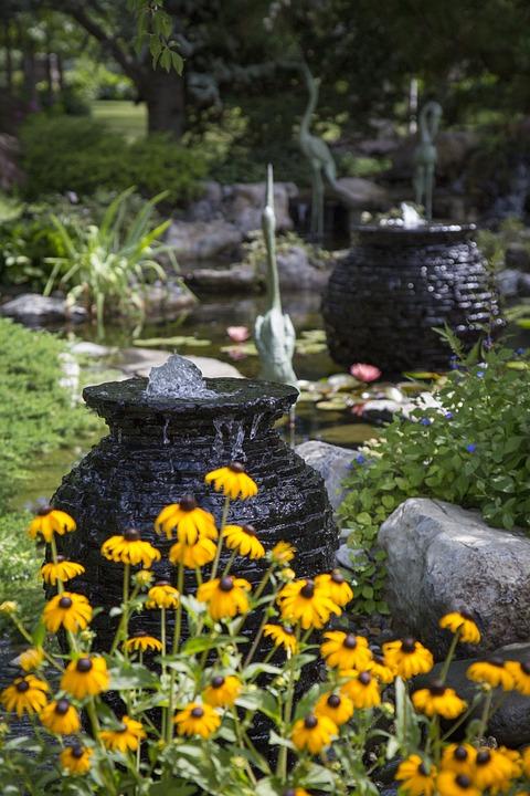 Yellow Flowers, Ponds, Fish, Yellow, Water, Flower