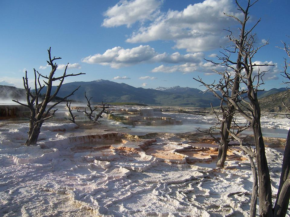 Yellowstone National Park, Wyoming, Terrace, Thermal