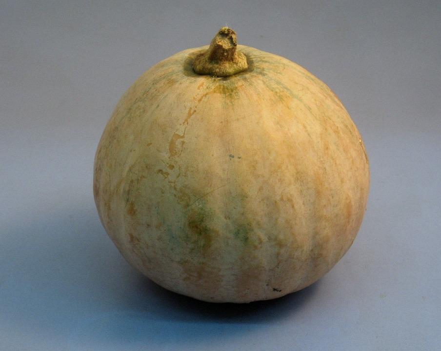 Pumpkin, Yokosuka, Japan
