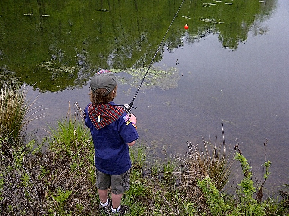 Fishing, Outdoors, Young, Fisherman, Nature, Water
