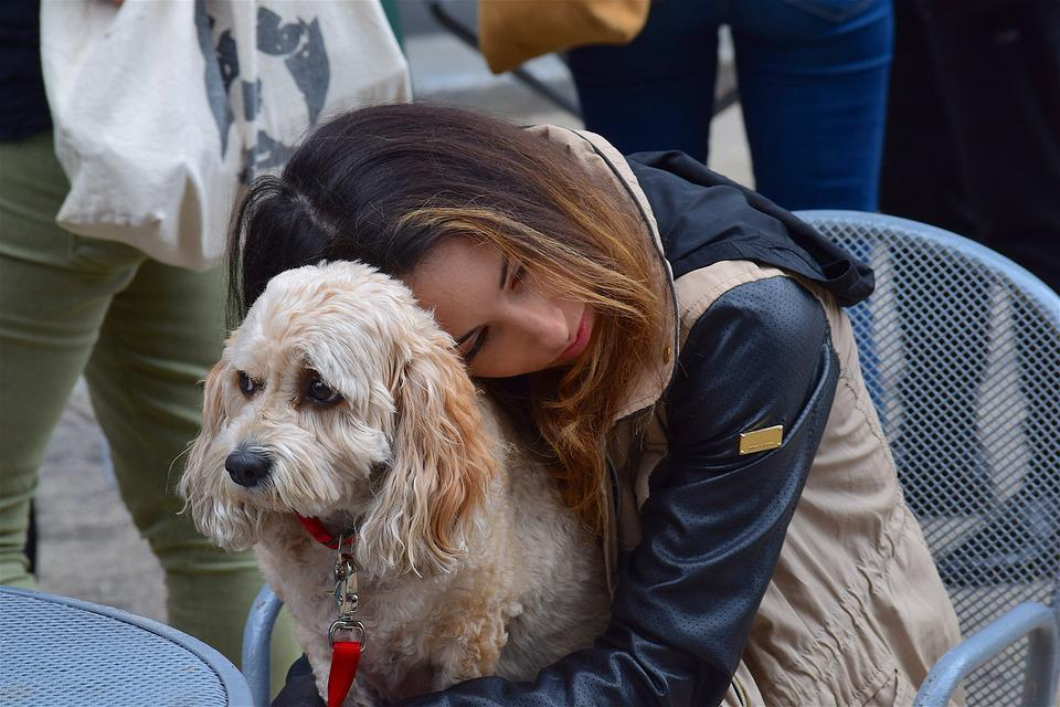 Woman, Dog, Pet, Female, Happy, Animal, Young, People