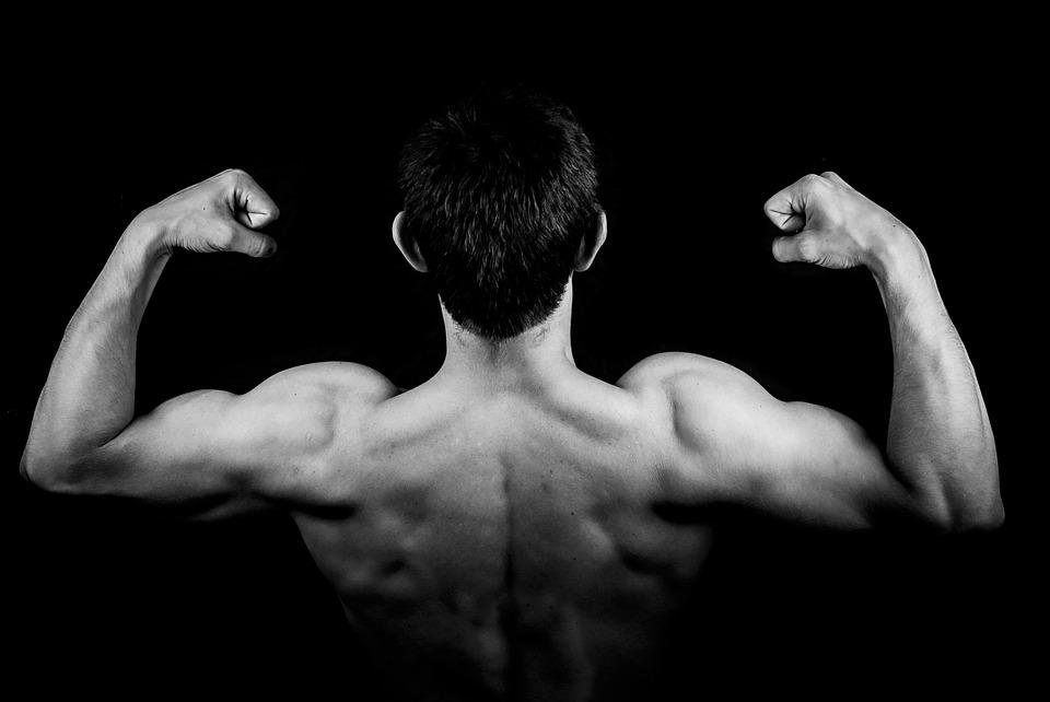 Man, Male, Boy, Person, Young, Muscles, Back, Biceps
