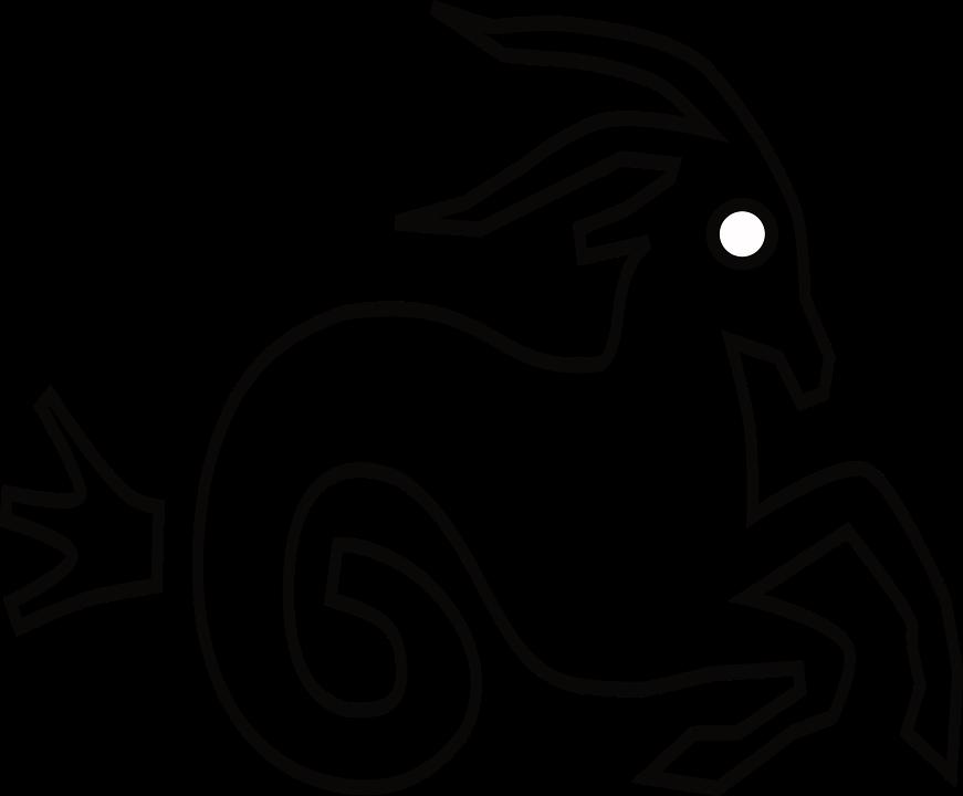 Astrology, Capricorn, Reference, Zodiac