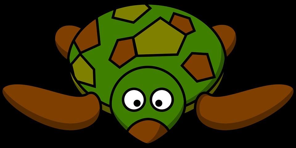 Turtle, Cartoon, Front, Brown, Green, Animal, Cute, Zoo