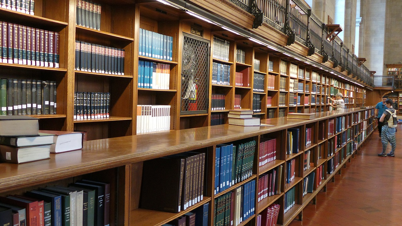 library dissertation