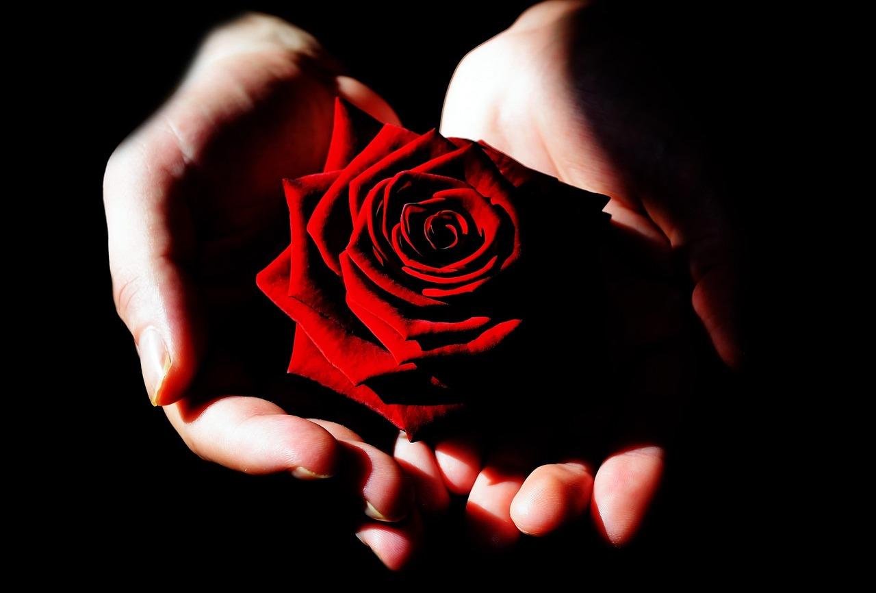 Картинки роза в руке парня, сникерса надписью поздравления
