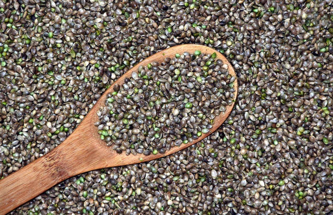 Wooden spoon scooping up hemp seeds