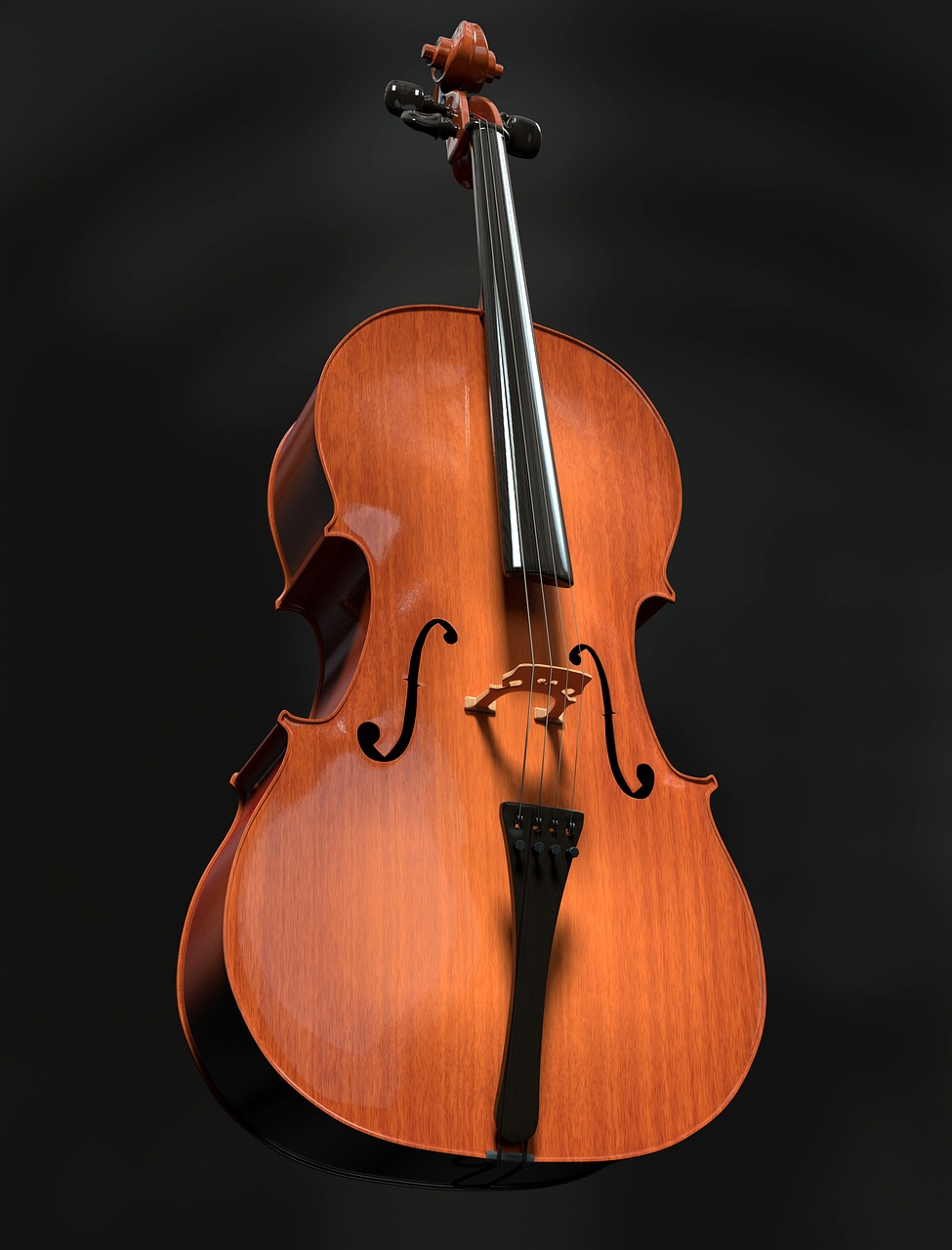 an introduction to viola an instrument from the violin family