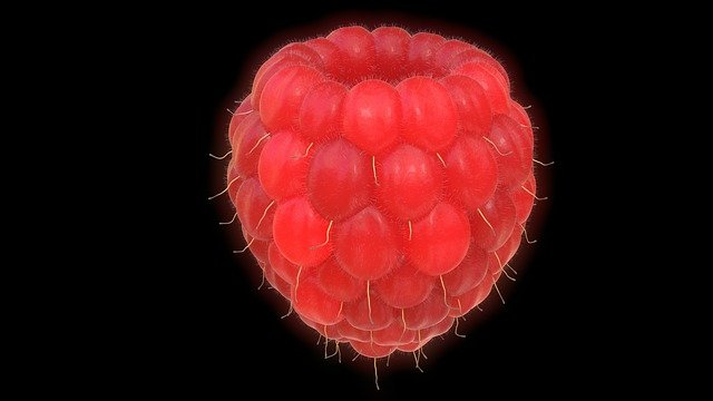 Raspberry, Fruit, Red, Large, 3d, Blender