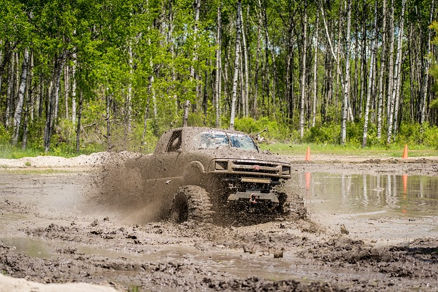 Mud Bog, Truck, Dirty, Outdoors, Extreme, 4wd, 4x4