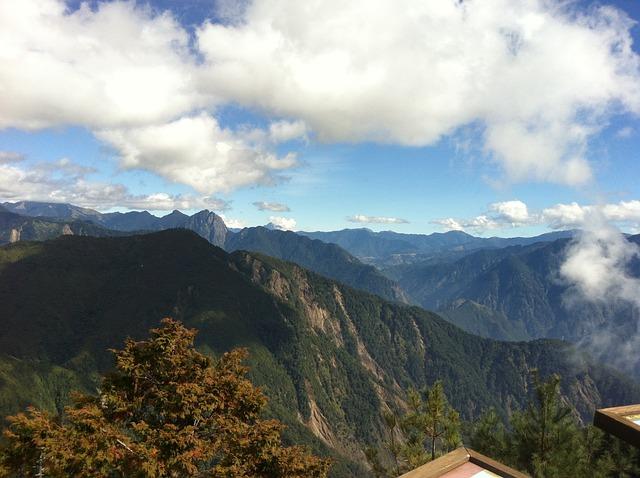 A Surname Mist, Woodland, Snow Mountain, Taiwan