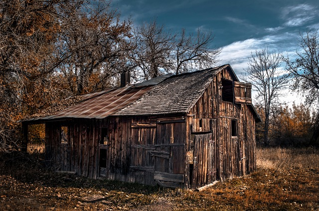 Barn, Abandoned, Farm, Homestead, Farm House, Trees