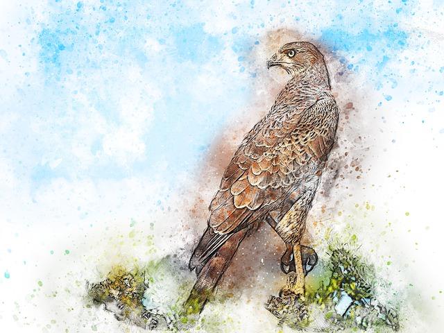 Bird, Falcon, Animal, Art, Abstract, Watercolor