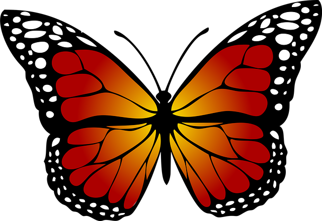 Butterfly, Monarch, Abstract, Artistic, Line, Art