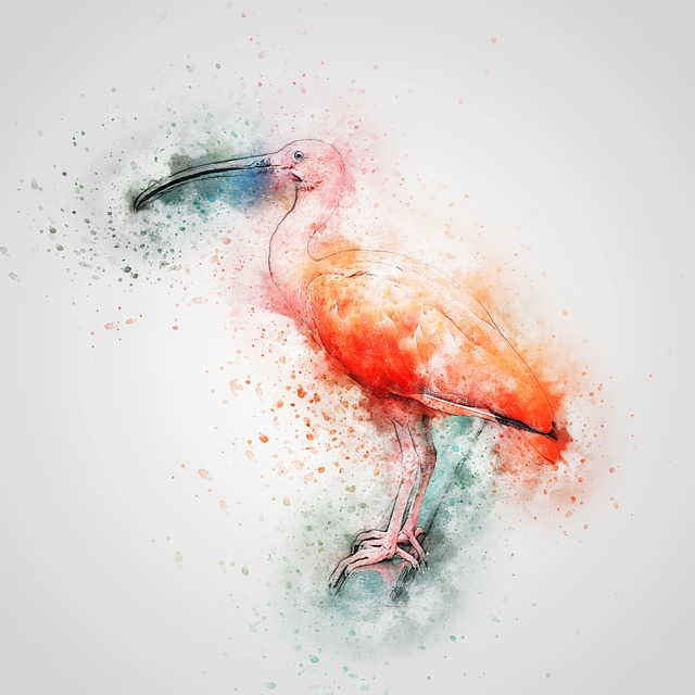 Ibis, Bird, Red Feathers, Art, Abstract, Vintage