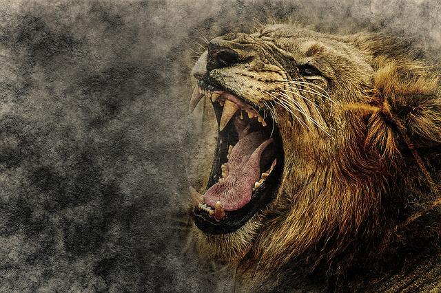 Lion, Animal, Roar, Art, Abstract, Vintage, Design