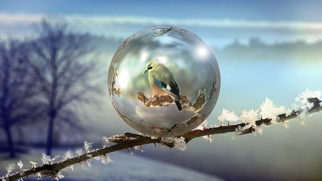 Winter, Soap Bubble, Abstract, Frozen, Wintry, Cold