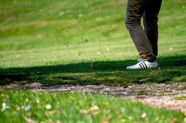 Golf, According To The Tee, Sport, Grass, Nature