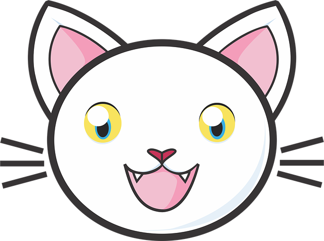White Cat, Kitty, Cute, Adorable, Fun, Kids, Animal
