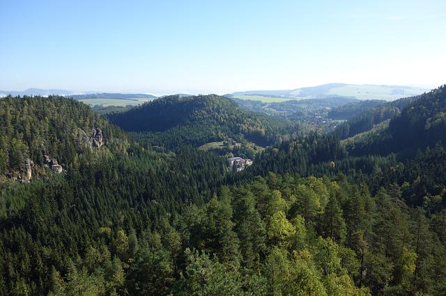 Forest, Trees, Landscape, View, Adršpach
