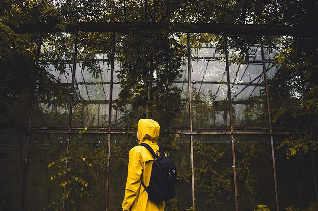 Adult, Backpack, Color, Environment, Greenhouse, Light