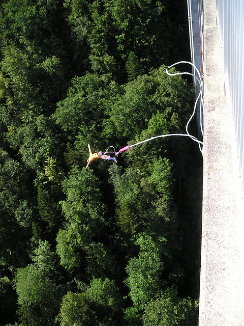 Bungy, Bungee, Extremely, Extreme Sports, Adventure