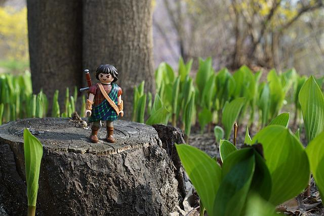 Playmobil, Forest, The Highlander, Adventure, Travel