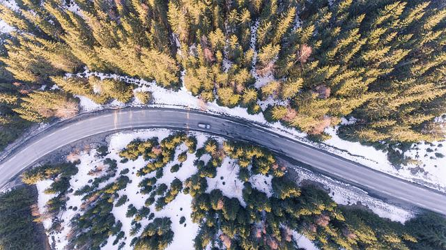 Aerial, Road, Car, Forest, Above, Abstract, Adventure