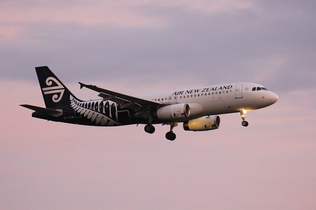 Air, Nz, New, Zealand, Plane, Landing, Aeroplane