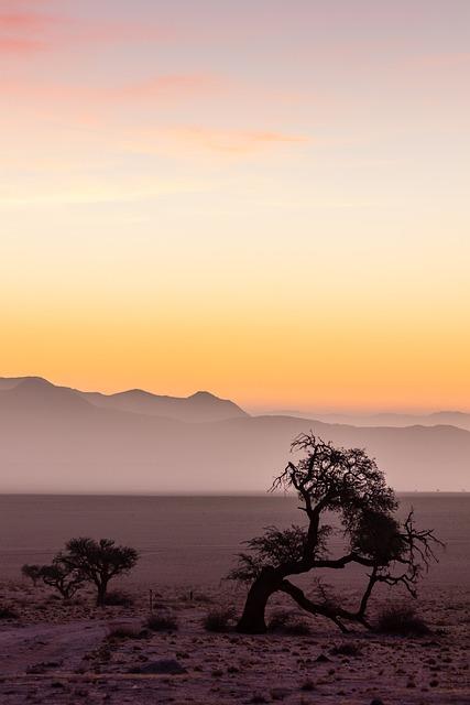 Namibia, Africa, Desert, Nature, Sahara, National Park