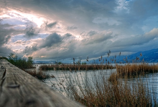Sky, Lake, Reeds, Greece, Scenery, Water, Afternoon