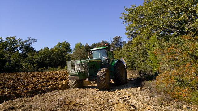 Tractor, Agricultural Machine, Agriculture, Field