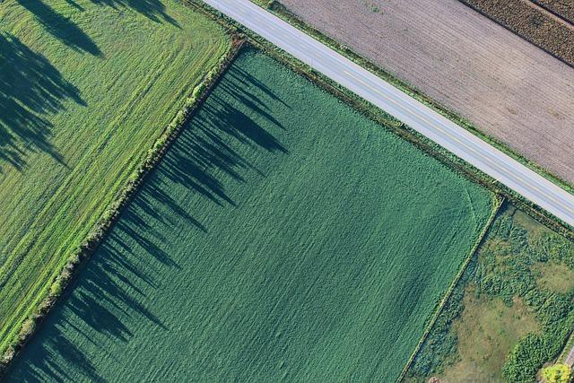 Agriculture, Cropland, Farm, Farmland, Field