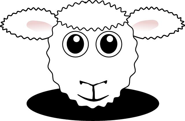 Sheep, Farm Animal, Agriculture, Farm, Cute, Animal