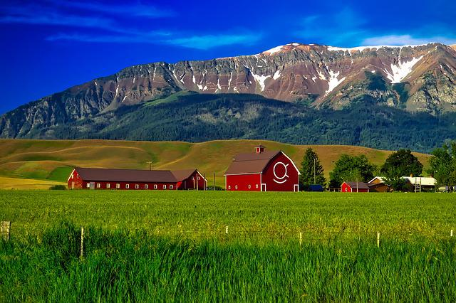 Oregon, Farm, Mountains, Agriculture, Barns, Field