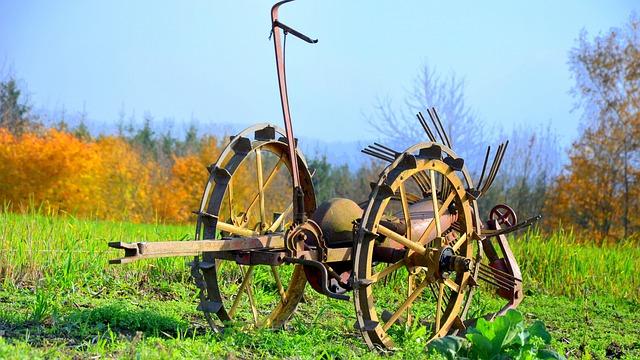Arable, Field, Autumn, Landscape, Agriculture