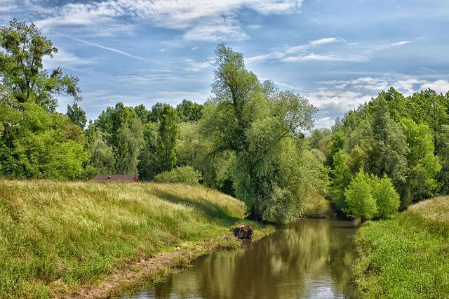 Neuburg Am Rhein, Green, Nature, Agriculture, Scenic