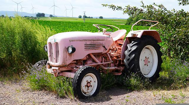 Tractor, Pink, Farm, Agriculture, Old