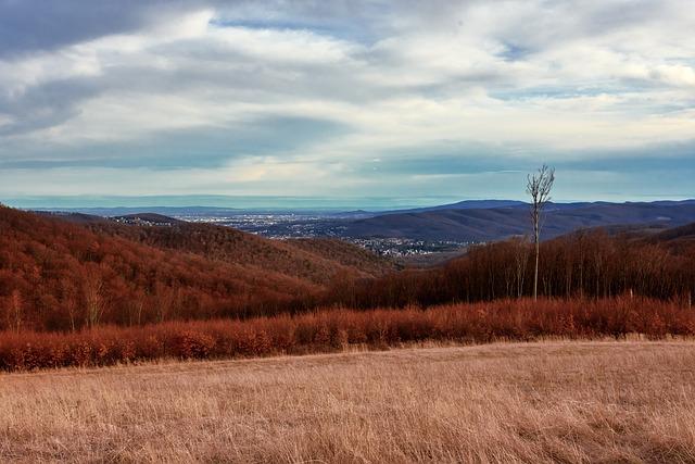 Nature, Landscape, Sky, Rural, Agriculture, Scenic