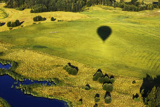 Green, Nature, Air Balloon, Bird's Flight, Lithuania