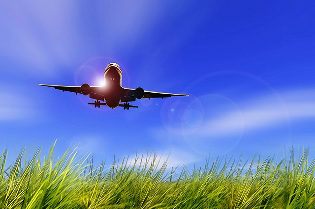 Aircraft, Flight, Sky, Grassland, Grass, Landing
