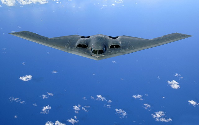 Delta Wings, Aircraft, Stealth Bomber