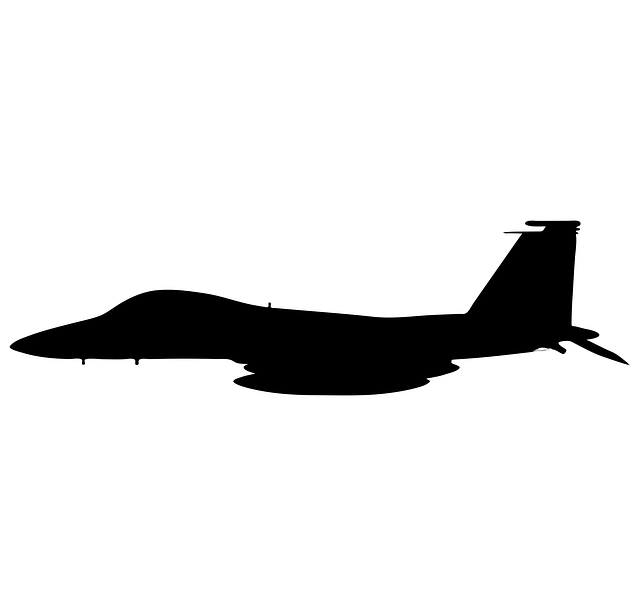 F5, Eagle, Airplane, Northrop, Freedom, Fighter