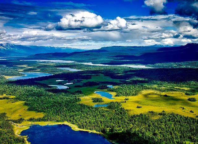 Denali National Park, Alaska, Aerial View, Landscape